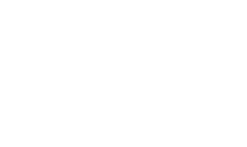 Bald Head Island Concierge Logo